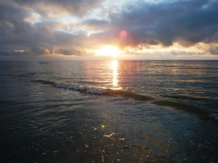 Sunrise am Sanibel Beach