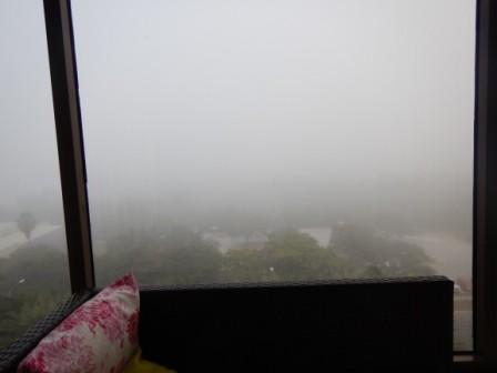 Nebelsuppe in Sarasota