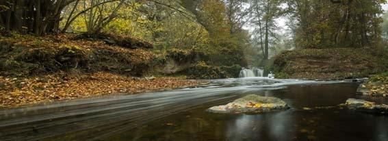 Der Nette-Wasserfall bei Mayen-Hausen