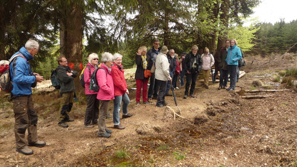 NABU-Exkursionsteilnehmer an einem Bruch im NP Hunsrück-Hochwald. Zweiter von links: Nationalpark-leiter Dr. Harald Egidi, der den Worten Roland Schmidts lauscht (siehe Foto unten).