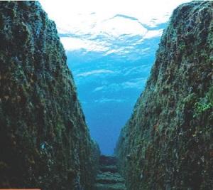 海底遺跡(イメージ)