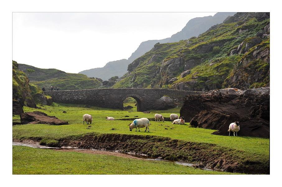 Gap of Dunloe / Killarney National Park XIII