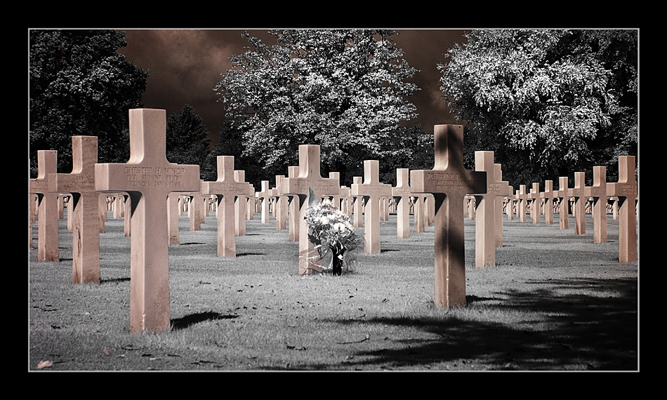 Soldatenfriedhof Henri-Chapelle III