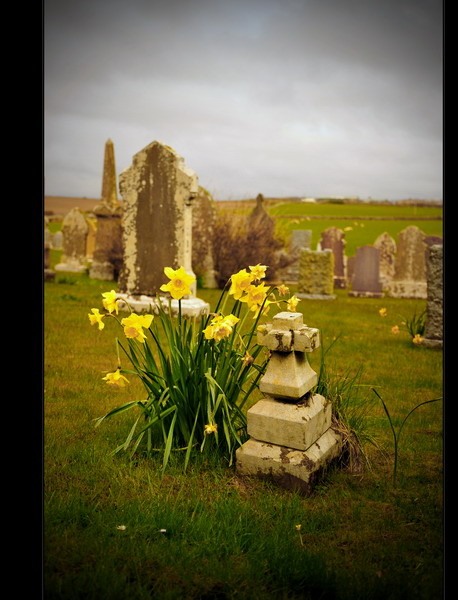 Orphir Round Kirk / Mainland, Orkney IV