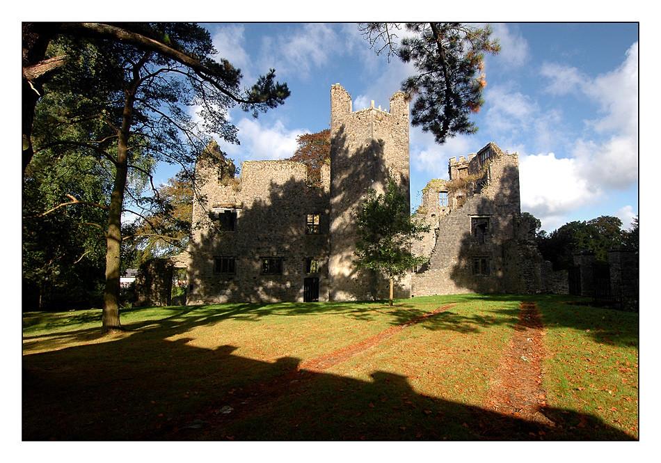 Mallow Castle I