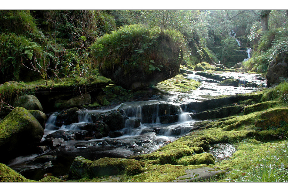 O'Sullivan's Cascade / Tomies Wood / Killarney National Park VI
