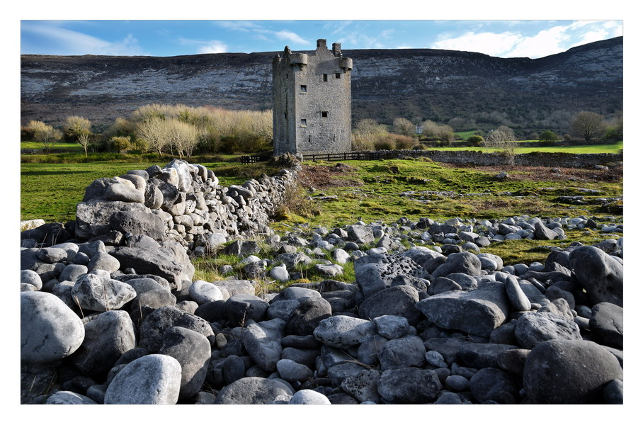 Gleninagh Castle, Co.Clare