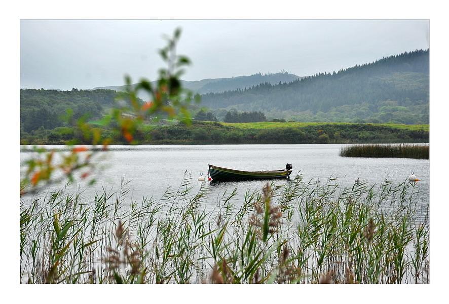 Gougane Barra National Forest Park / Cork I