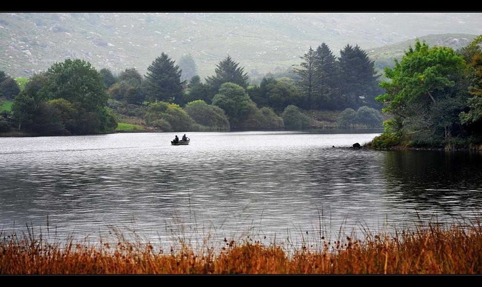 Gougane Barra National Forest Park / Cork IV