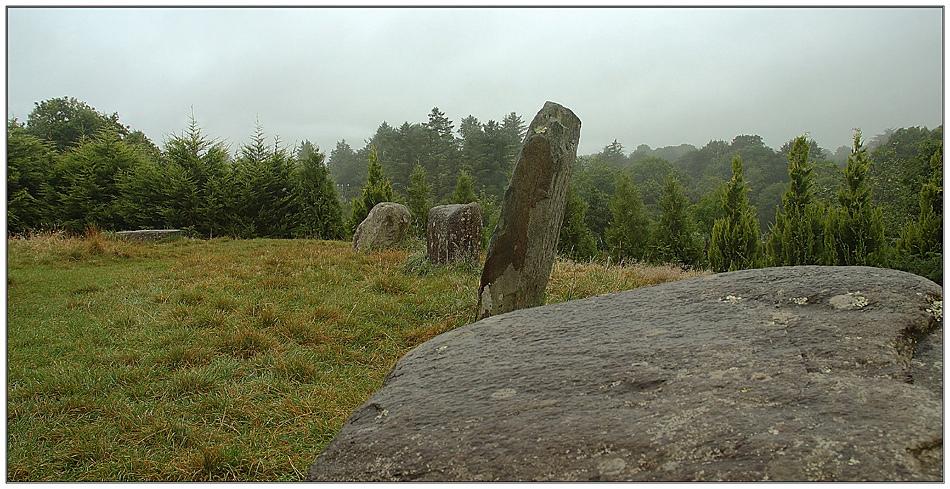 Ring of Kerry / Steinkreis in Kenmare
