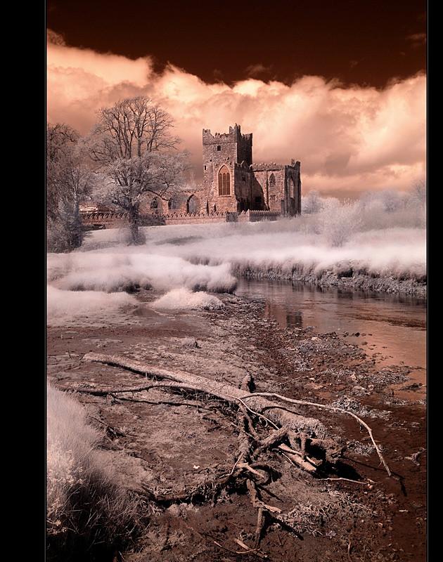 Tintern Abbey / Hook Peninsula VI (Infrarot)