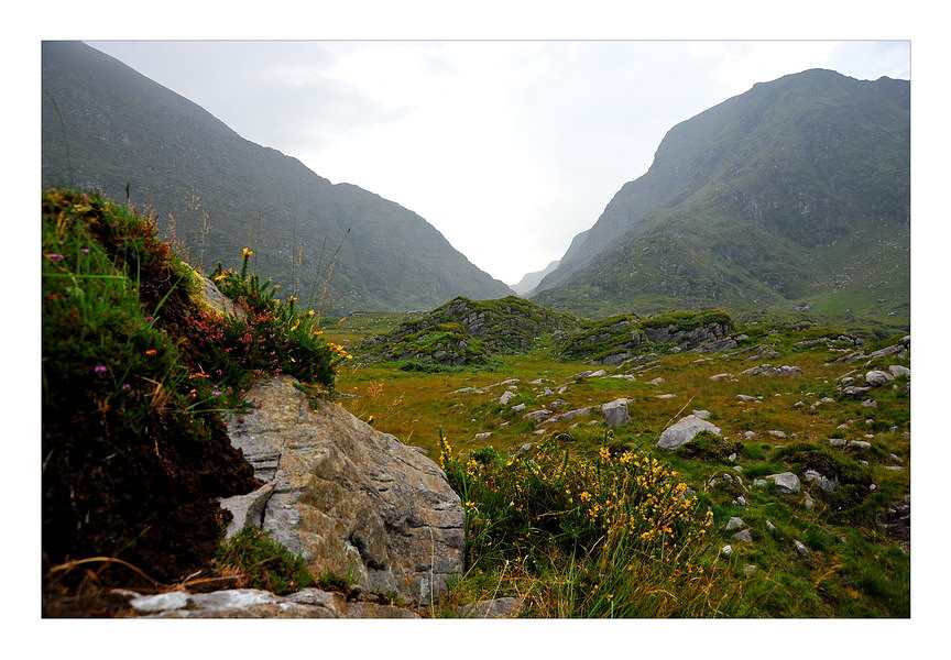 Gap of Dunloe / Killarney Nationalpark VIII