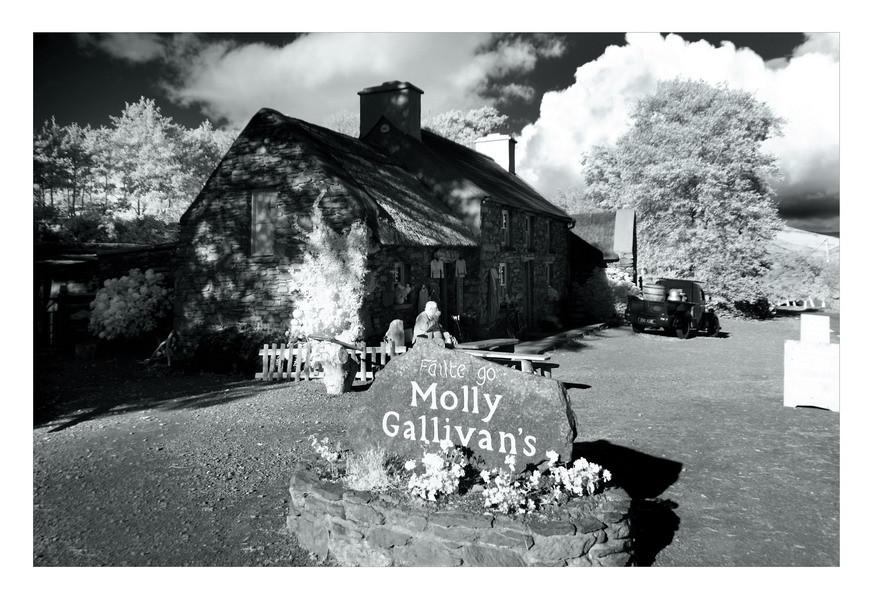 Molly Gallivans Cottage & Traditional Farm /Bonane, Co. Kerry