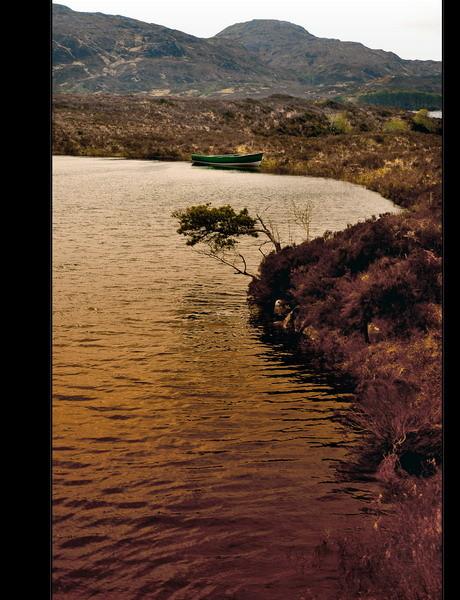 Loch Assynt, Sutherland, Highlands III