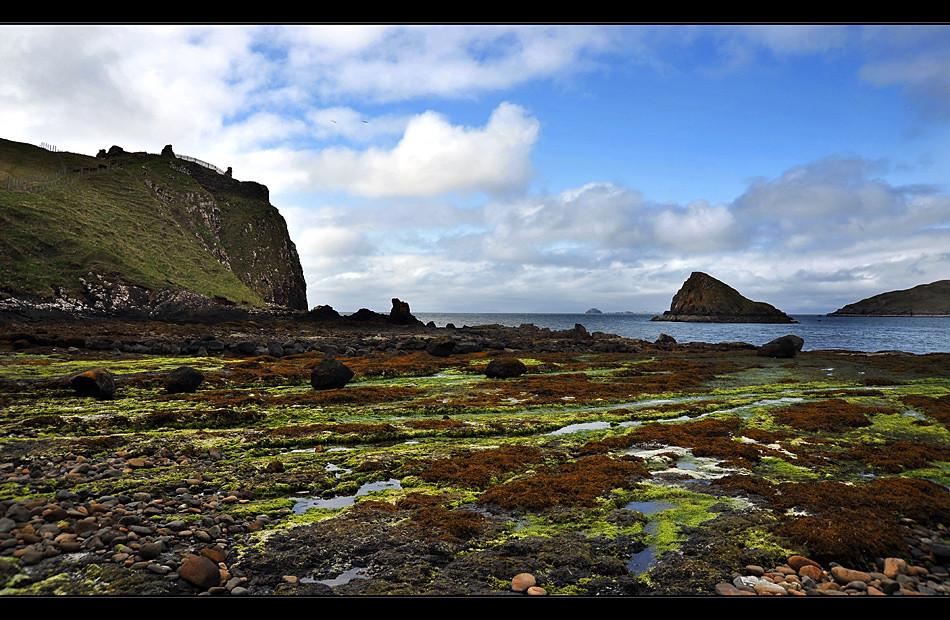 Duntulm Castle / Trotternish - Isle of Skye V