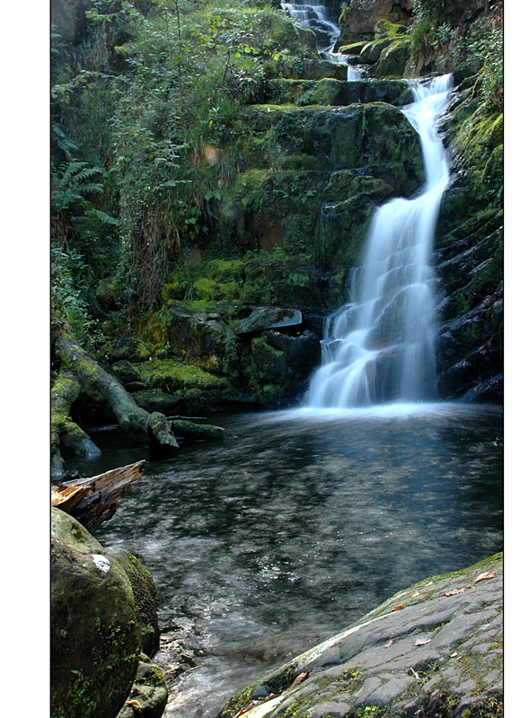 O'Sullivan's Cascade / Tomies Wood / Killarney National Park I