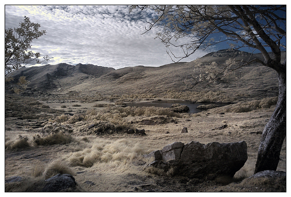 Ladie`s View Killarney National Park II (Infrarot)