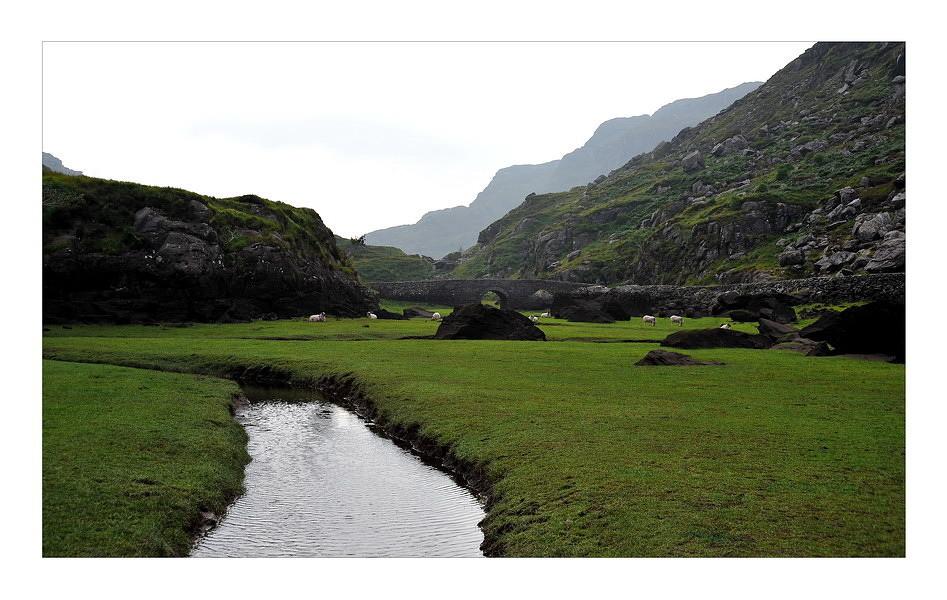 Gap of Dunloe / Killarney National Park XI