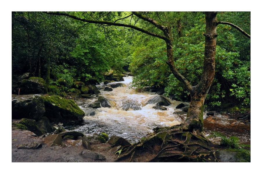 Torc Waterfall, Killarney Nationalpark