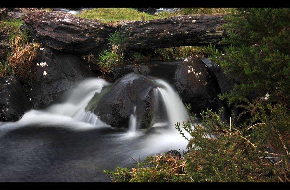 Inchiquin Park / Beara Peninsula II