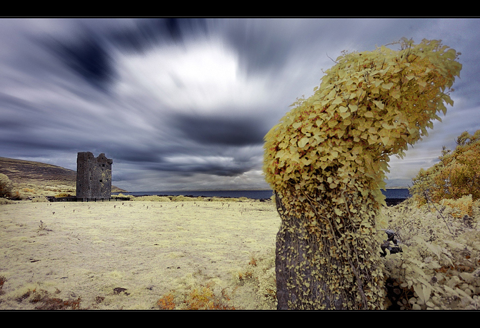 Gleninagh Castle / County Clare III (Infrarot)