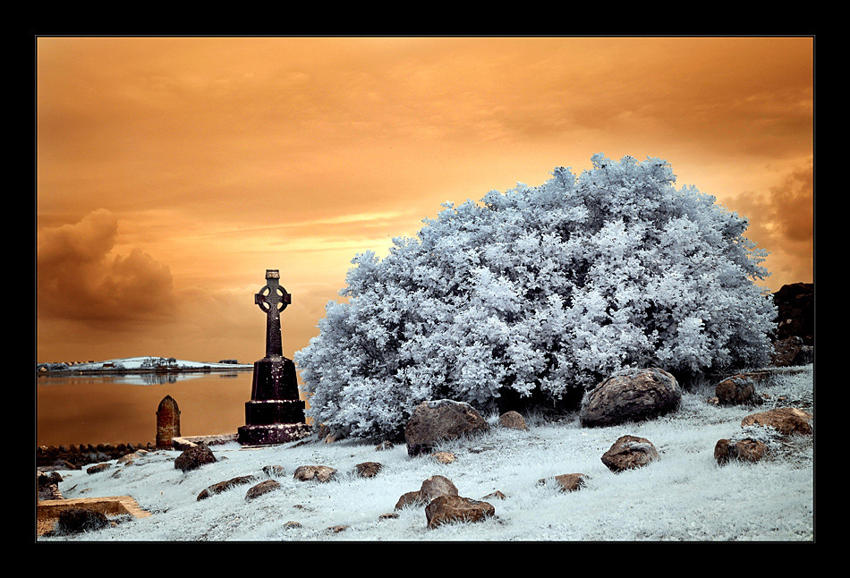Murrisk Abbey / County Mayo (Infrarot)