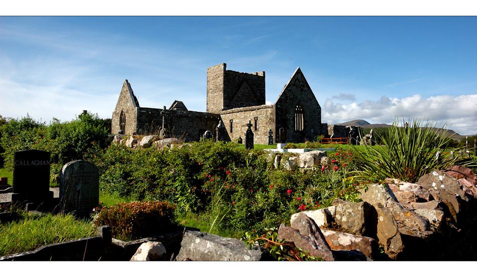 Burrishoole Abbey / County Mayo III