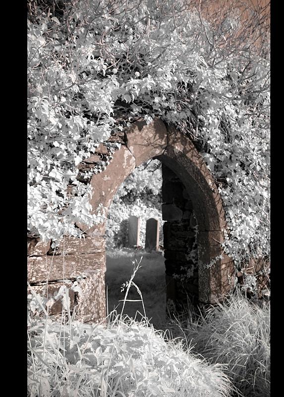 Old Cemeterie / Kilcoe / Southwest of County Cork IV (Infrarot)