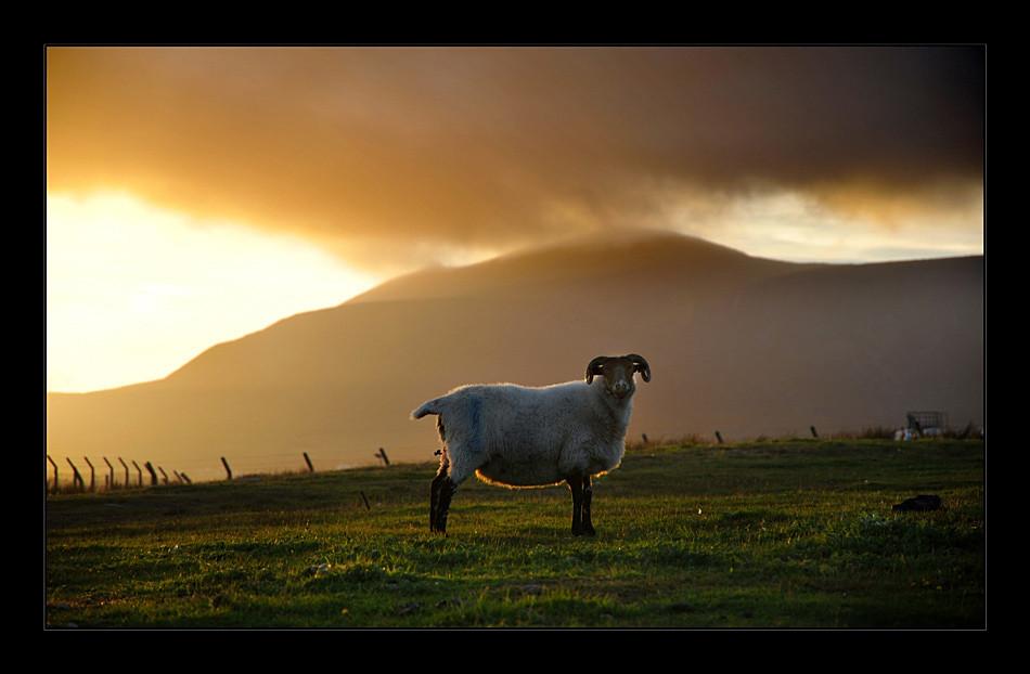Keel / County Mayo III
