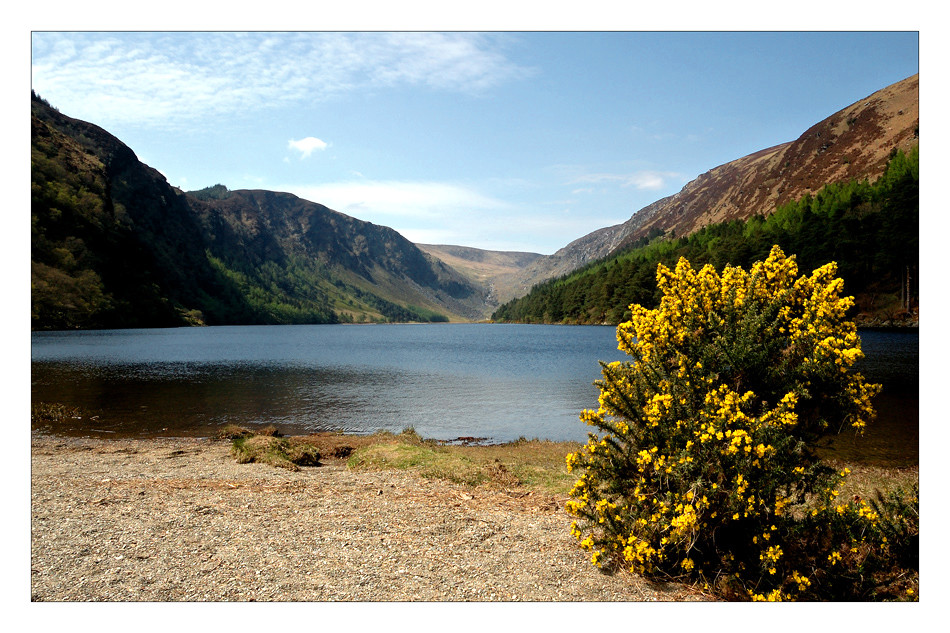 Upper Lake / Wicklow Mountains