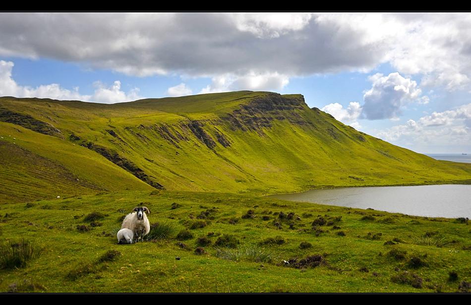 Glendale - Isle of Skye III