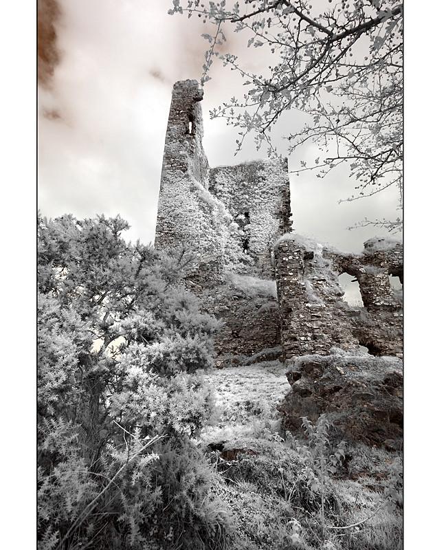 Castle Barrett / Mallow - Co. Cork IX (Infrarot)
