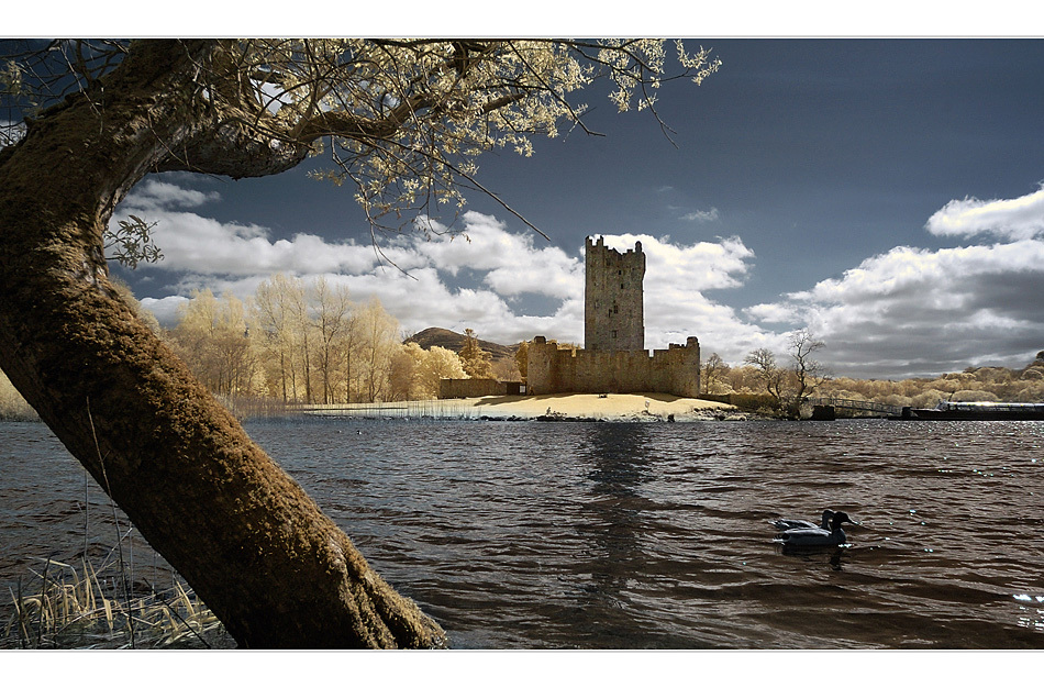 Ross Castle (Infrarot)