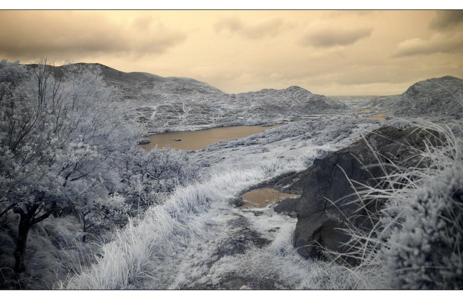 Ladies View, Killarney Nationalpark III (Infrarot)