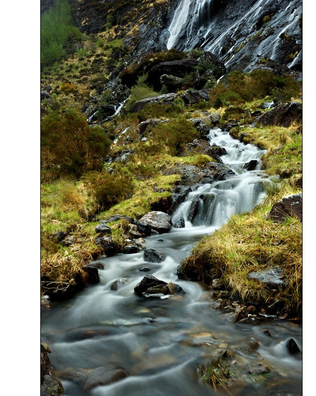 Inchiquin Park / Beara Peninsula V