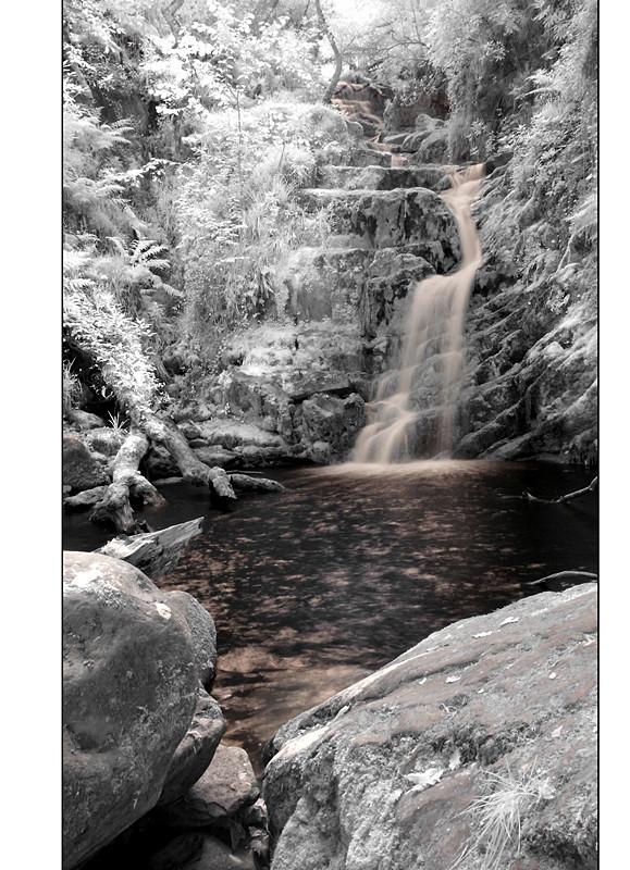 O'Sullivan's Cascade / Tomies Wood / Killarney National Park III (Infrarot)