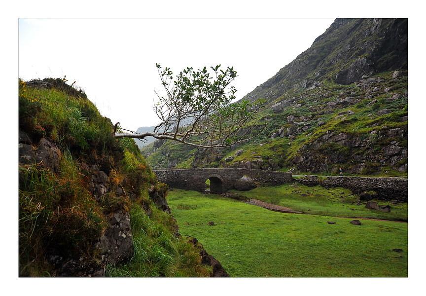 Gap of Dunloe / Killarney National Park XIV
