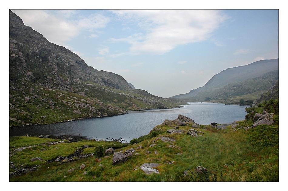 Gap of Dunloe / Killarney National Park II