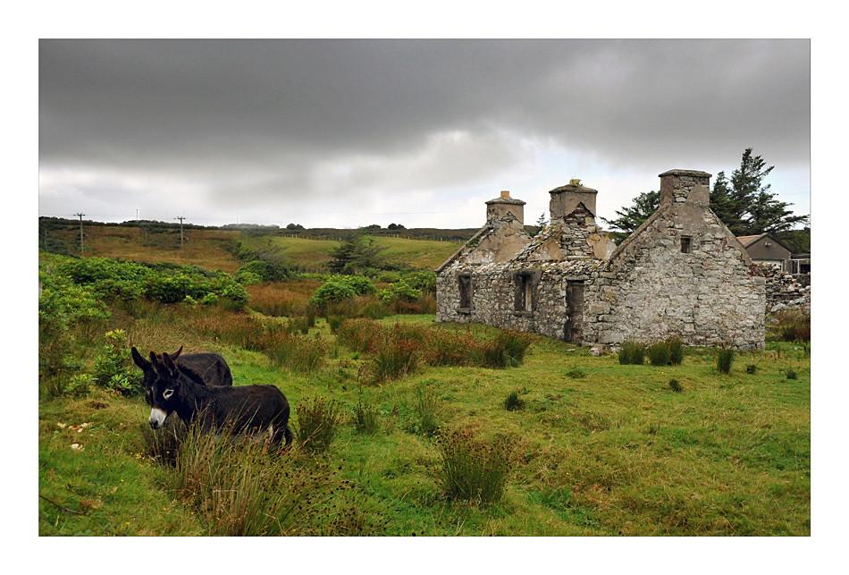 Achill Island / County Mayo III
