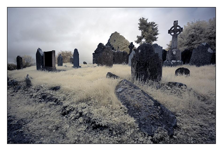 Old Cemeterie / Mallow - Co. Cork III (Infrarot)