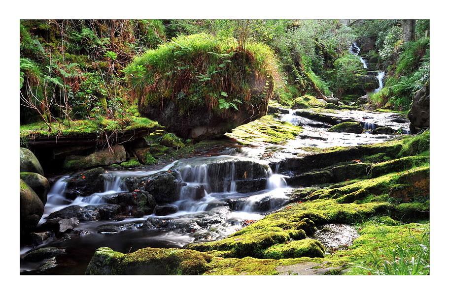 O'Sullivan's Cascade / Tomies Wood / Killarney National Park V