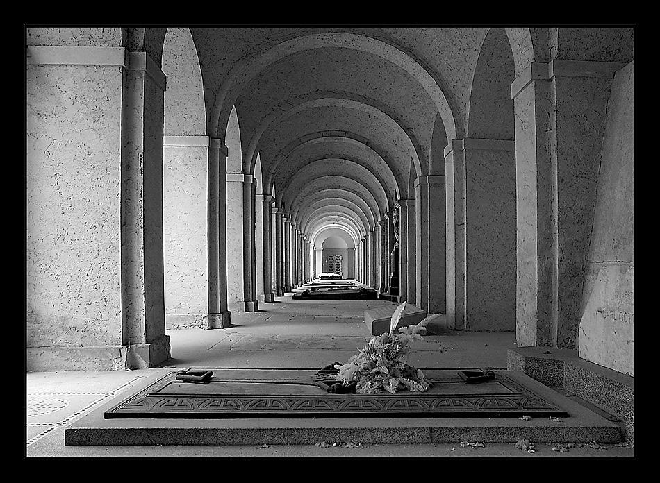 Hauptfriedhof Frankfurt (Infrarot)