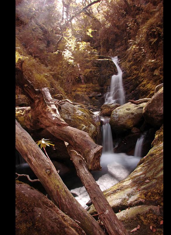 O'Sullivan's Cascade / Tomies Wood / Killarney National Park II
