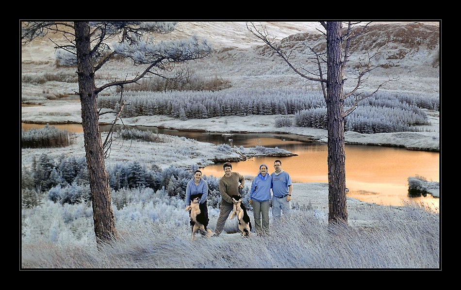 Sheeffray Wood / Connemara IV (Infrarot)
