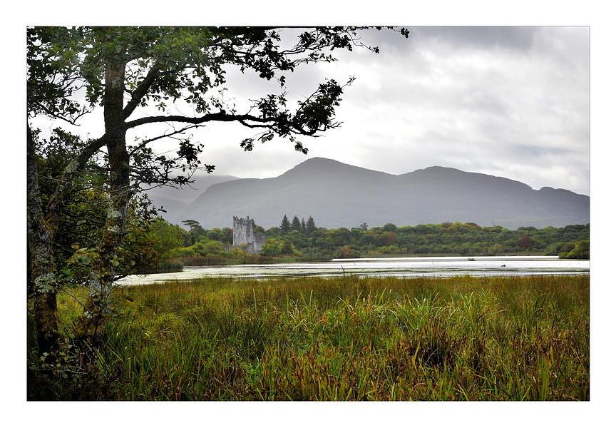 Ross castle / Killarney National Park I