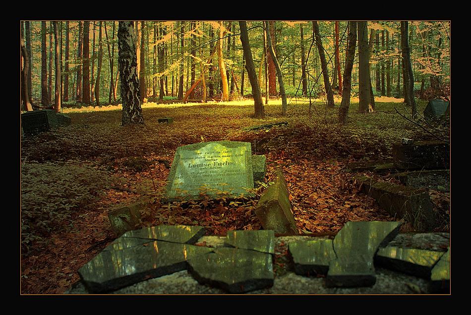Bergmannsfriedhof Friedrichsegen III