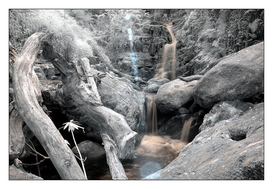 O'Sullivan's Cascade / Tomies Wood / Killarney National Park IV (Infrarot)