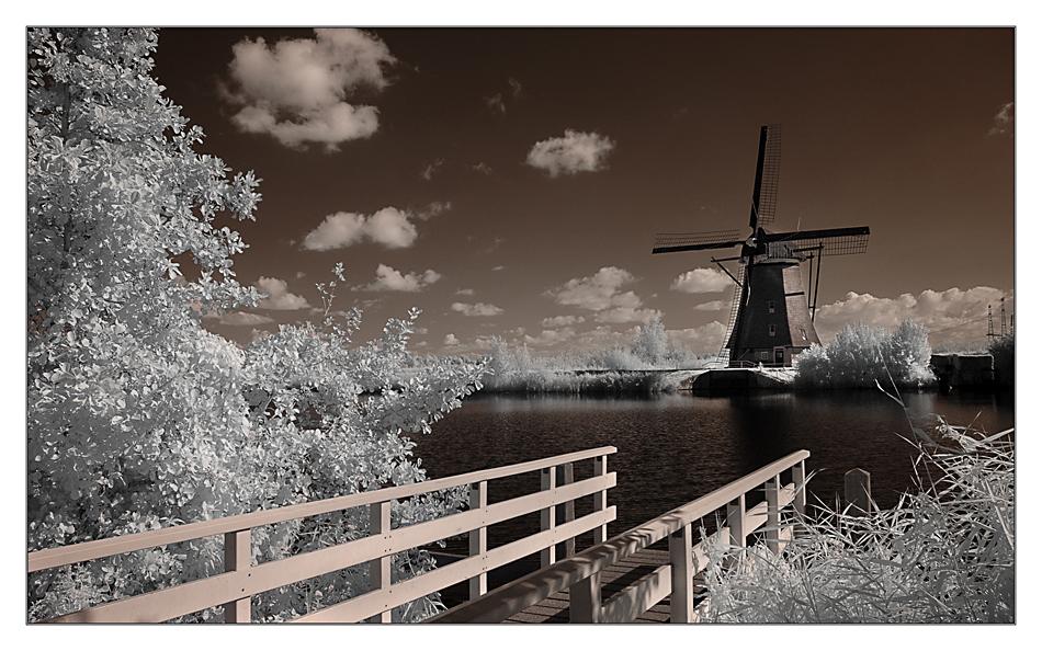 Die Mühlen von Kinderdijk III