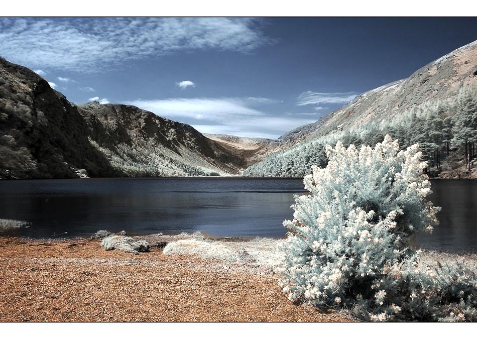 Upper Lake / Wicklow Mountains (Infrarot)