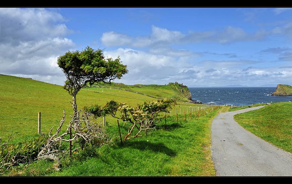 Duntulm Castle / Trotternish - Isle of Skye